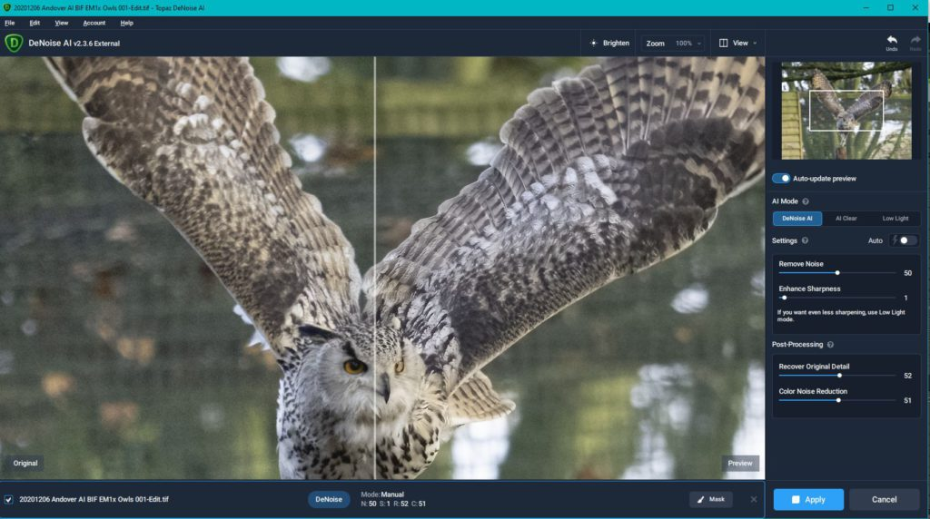 Post-processing workflow for birds in flight